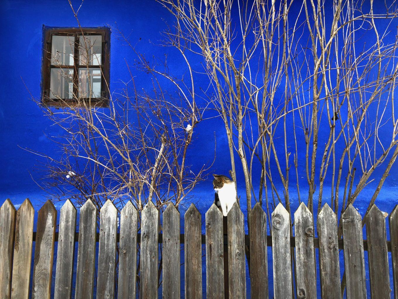 Albastrul din zona Sibiului
